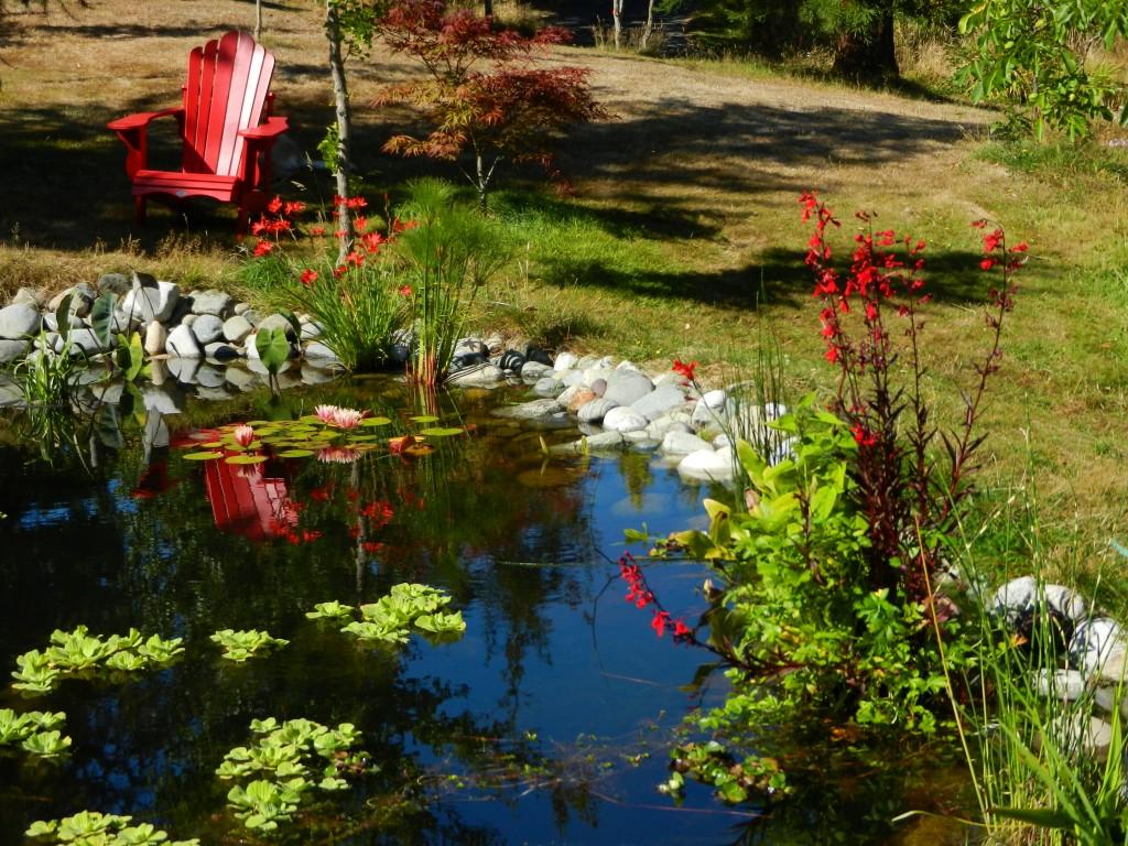 2011-09-03 pond copy